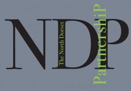 NDP grey logo
